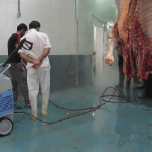 cleaning device slaughterhouse شستشوی و نظافت کشتارگاه ها با واترجت صنعتی