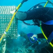 blasting underwater کاربردهای استفاده از واترجت زیر آب
