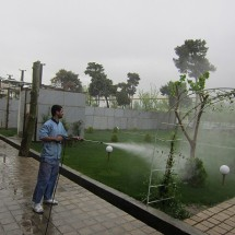 cleaning tree with high pressure washer شستشو و نظافت فضای سبز با دستگاه واترجت صنعتی