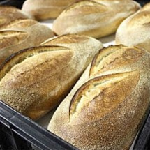 bakery vacuum cleaner جاروبرقی صنعتی صنایع پخت نان